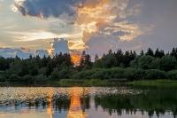 Sunset - Plattenteich