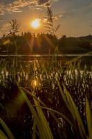 Sunset - Stronesteich