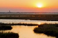 Sunset - Lio Piccolo (Lagune von Venedig, Italien)